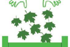 Collecte des déchets verts 2020