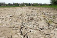 Sécheresse 2018 : Reconnaissance de catastrophe naturelle