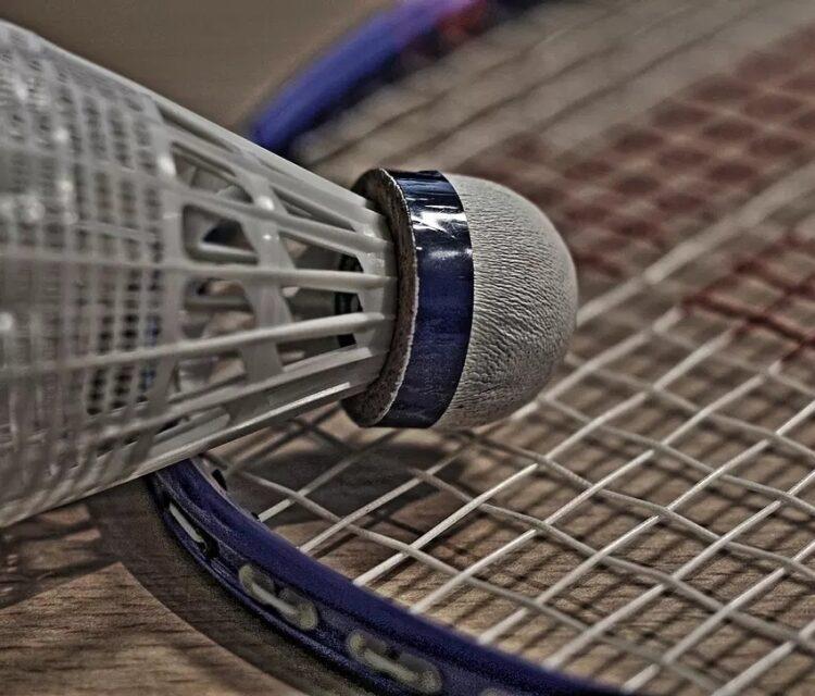 Création d'une nouvelle association de Badminton dans les Monts d'Or